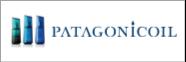 patagonic